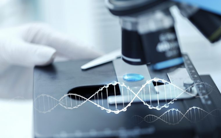 Novel BCS1L Gene Variants Linked to Mitochondrial Disorders, Including GRACILE Syndrome
