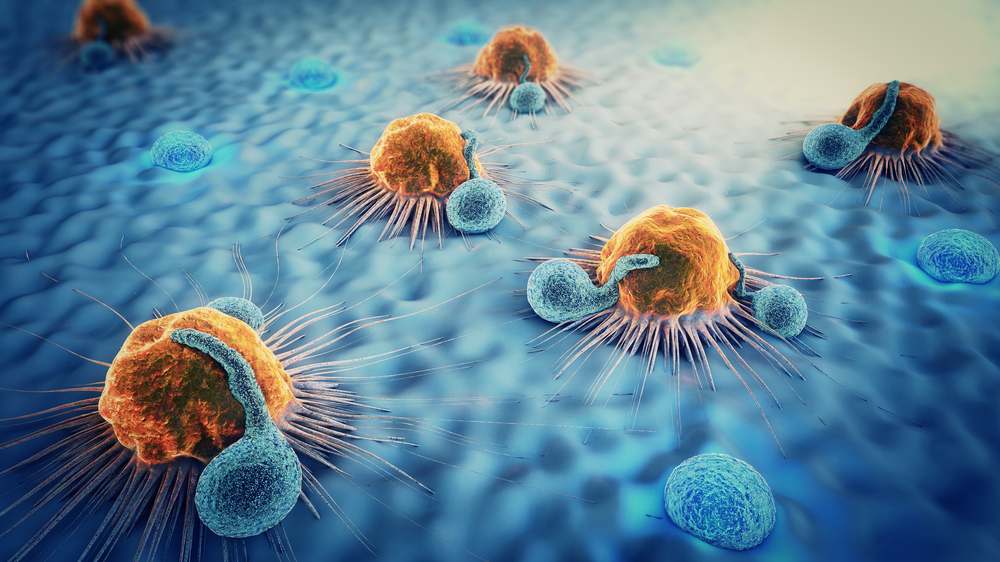 antibody therapy and cancer