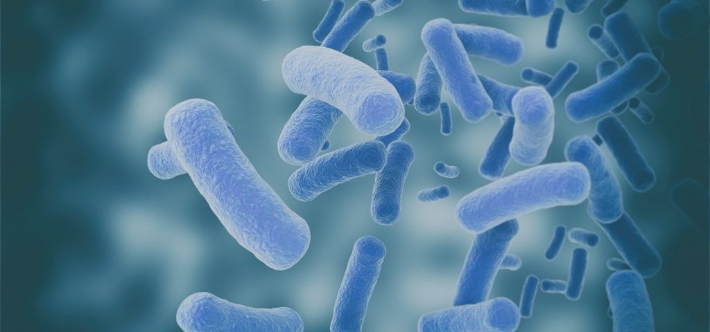 Probiotic as Add-on Treatment Seen to Aid Patients in Small Study