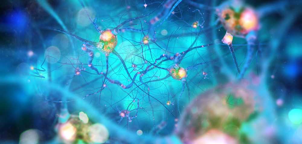 Neurons, Not Nearby Cells, Decide Dopamine Levels, Study Reports