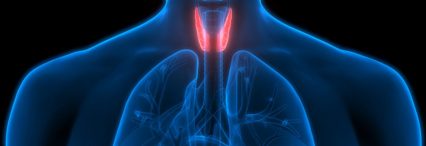 Blood Levels of 2 Minerals May Predict Faster Parathyroid Recovery