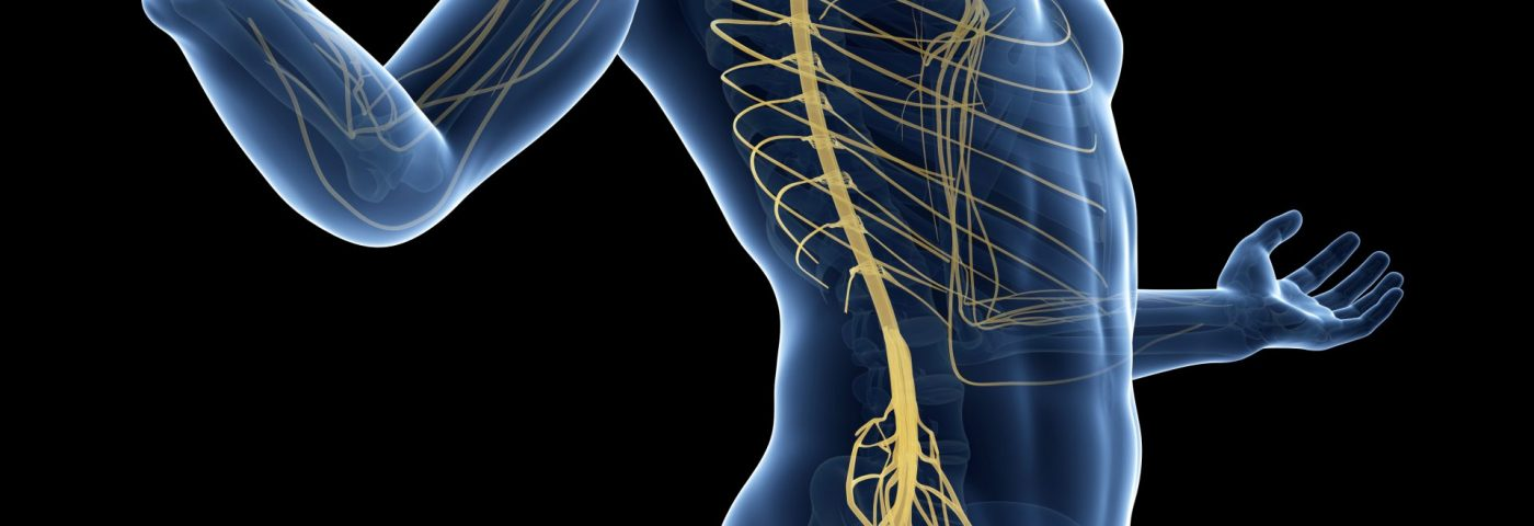 Blood Neurofilament Light Chain Levels May Be Myelopathy Biomarker in ALD
