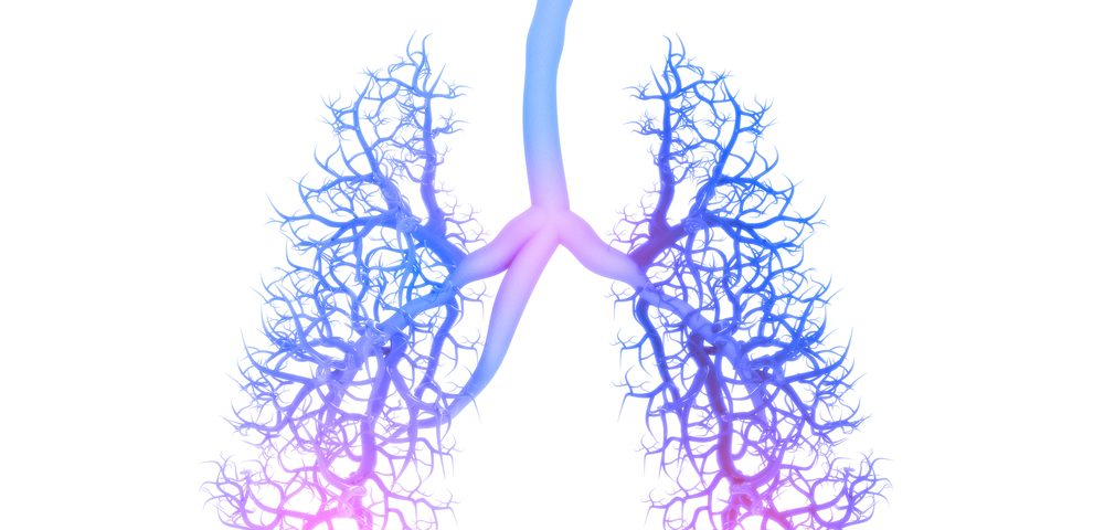 Galectin‐10 Blood Levels Linked With Inflammation, Lung Remodeling in Study