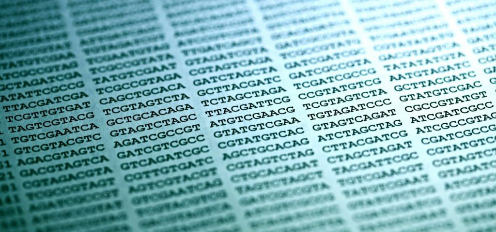 WNT9B Genetic Variant Linked to Increased Relapse Risk