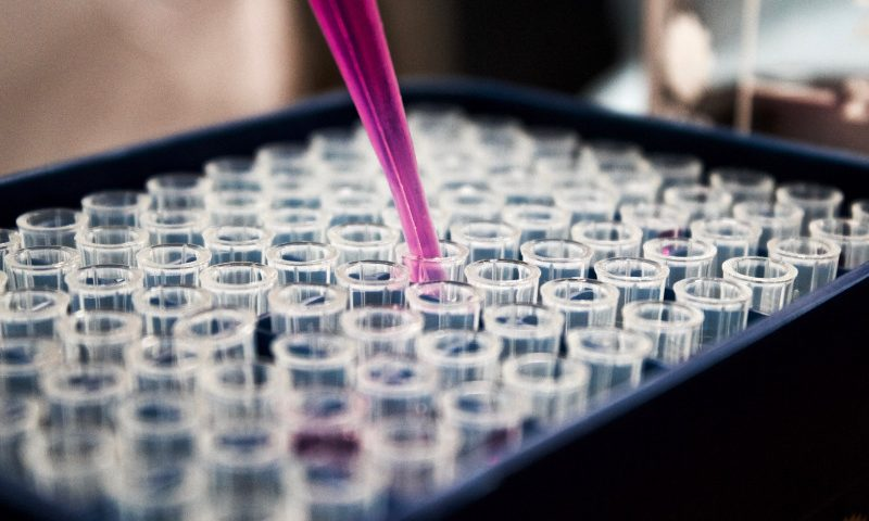 Avrobio Planning Pivotal Trial of AVR-RD-01 Gene Therapy for Fabry