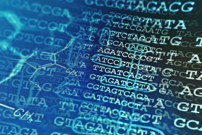 Genetic Cause of PWS Can Affect Age at Diagnosis, Therapy Start