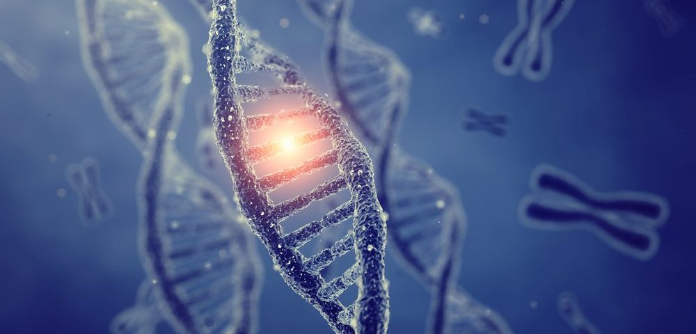 Ultra Rare CMT Subtype 2Z Identified in 4 Chinese Families