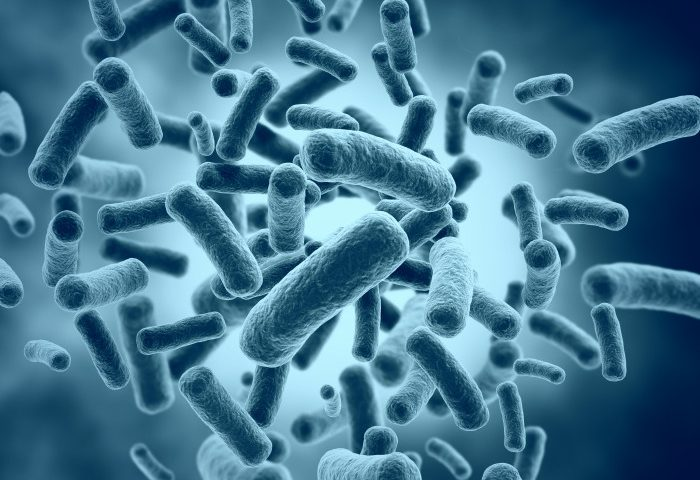 This Probiotic May Help Prevent Obesity in Children with PWS