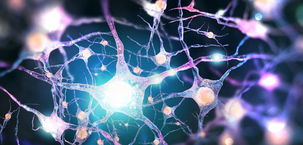 Motor Neurons From Patients 'Powerful' Way of Spotting Therapies