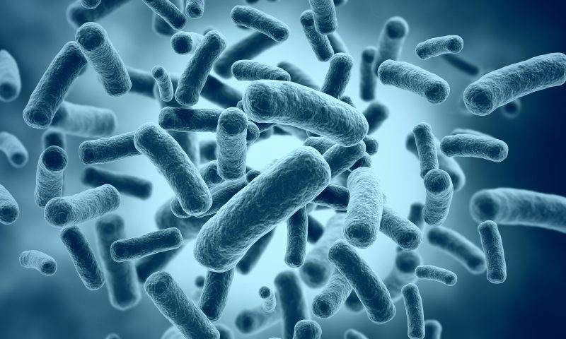 Study: Fecal Microbiome More Diverse in SSc Patients