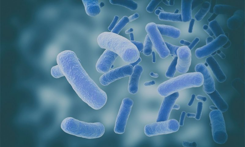 Trial of Microbiota Transplant in Treating Patients Opens in Australia