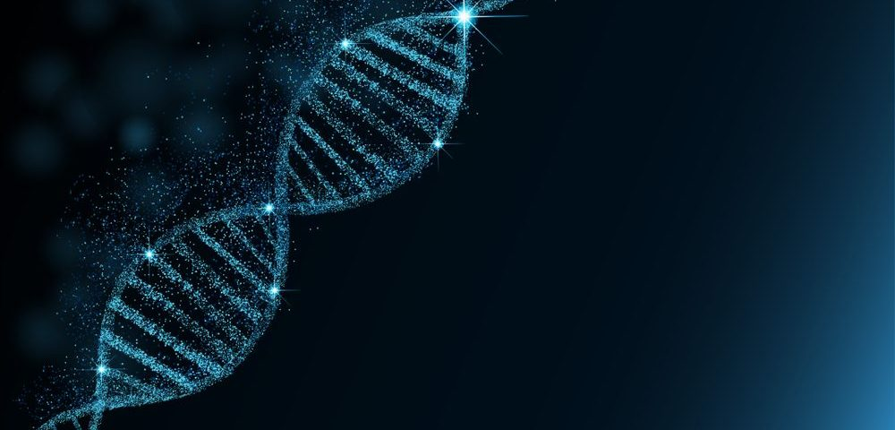 Investigational CMT1A Gene Therapy Eased Myelin Loss in Mice